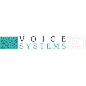 Logo Voice System